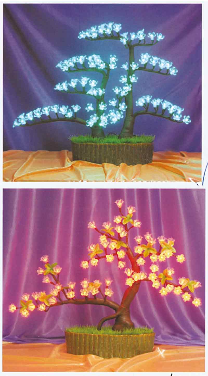 Bonsai e vasi luminosi effeci spettacoli gonfiabili e for Vasi per bonsai prezzi